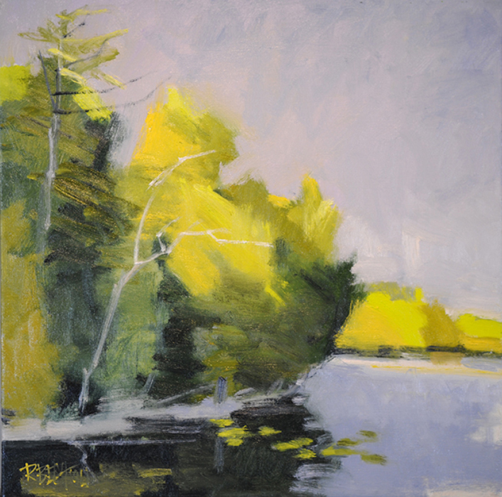 Cedars At Little Lake 24″ X 24″