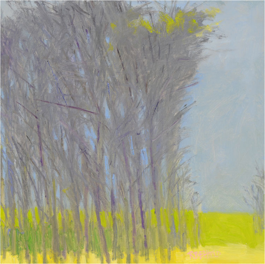 The Green Between The Trees  24″ X 24″